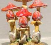 Maravigna Mushrooms