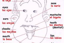 Spanish - face and body vocab