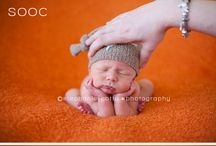 {Newborn Photography Inspiration}