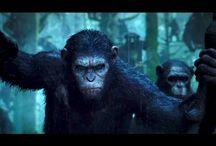 Latest movie trailers / Movie trailers ... I love my movies