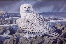 Charles Tunnicliffe (1901-1979) / (1 December 1901 – 7 February 1979) Charles Frederick Tunnicliffe R.A. (1 December 1901 – 7 February 1979)[1] was an internationally renowned naturalistic painter of British birds and other wildlife. He spent most of his working life on the Isle of Anglesey. http://en.wikipedia.org/wiki/Charles_Tunnicliffe http://www.thecharlestunnicliffesociety.co.uk/