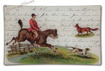 Horse & Hound / by Elizabeth Beck