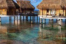 Vacation dreams /