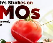 """Say NO to GMO- COVVHA.net / """"The Bt corn and soya plants that are now everywhere in our environment are registered as insecticides. But are these insecticidal plants regulated and have their proteins been tested for safety? Not by the federal departments in charge of food safety, not in Canada and not in the U.S"""