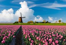 My future country - Netherlands