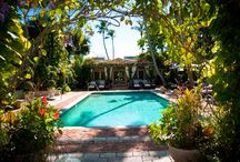 The Escalante - a Naples hideaway! / .....Guests relax to the rhythm of our gentle ambiance and tropical venue throughout their stay......