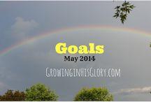 My 2014 Goals