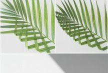 blare leaf art