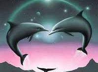 Amor de delfines