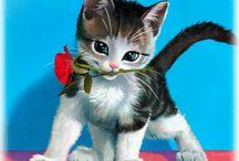 gif kočky