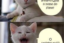 Só pra rir !