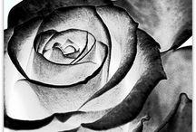 Beautiful / by Lauren Dingledine