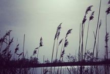 miejsca , krajobrazy , przyroda