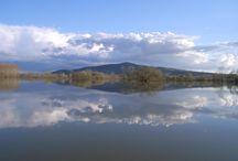 Bodrogzug /   A Tokaj-Bodorgzug Tájvédelmi Körzet Bodrogzug terülte az ország egyik legszebb vízitúrázó helye. Amely amellett hogy az ártéri- és vizes élőhelyei által a térség legnagyobb  ilyen jellegű védett természeti területe, alkamas arra is hogy ezeket be is lehetssen mutatni az érdeklődők számára.