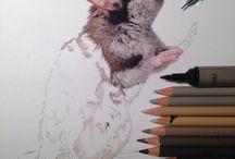 Tegning og kreativitet