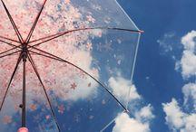 Umbrellas & lights