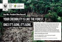 WWF in Aktion