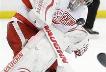 Detroit Red Wings / by The Oakland Press