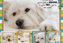 Scraapbook Pages Pets