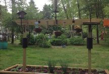 Garden & Yard Ideas