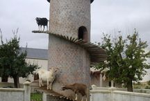 Goat house / Στάνη κατσικιών