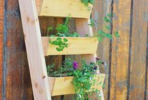 Herb Garden Vertical Creative