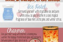 Scent & Warmer of the Month - Scentsy Fragrance SOTM - WOTM / Scent & Warmer of the Month - Scentsy Fragrance SOTM - WOTM