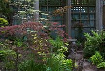 Imaginery garden / Garden stuff