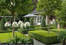 -  Garden
