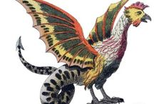 Lizards and Roosters / by Kate Shay