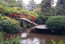 Kubota Gardens / in Seattle WA