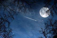 Night / Good night