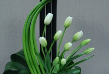 çiçek tanzimi