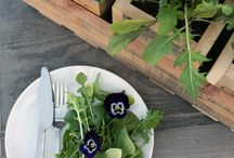 Garden to Table Vegetables / Easily and successfully grow vegetables in any location