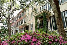 Savannah / I love Savannah! We lived there and had our wedding there, but ultimately moved back to NY. I still miss certain things, though! / by The Beauty Blogger