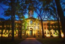 Princeton Nights / Our campus under the moon and stars.