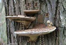 giardino delle fate / fairy garden
