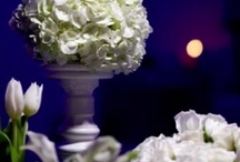 Our Work  / by Black Iris Floral Events