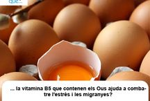 Ous / Huevos  / Aquí trobaràs curiositats sobre els ous / Aquí encontrarás curiosidades sobre los huevos