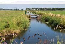 Groep 6 - Blauwe Planeet h1 les 3 / Hoe wordt Nederland beschermd tegen het water?