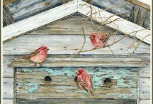 ПТИЦЫ 2  BIRDS 2