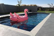 Mayfair Pools Hawkes Bay / swimming pools by Mayfair Pools Hawkes Bay