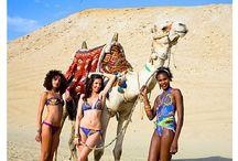 Surf Africa