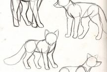 Собаки референсы