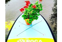 The Story of my Paddle Board