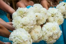 Bridesmaids Bouquets in White