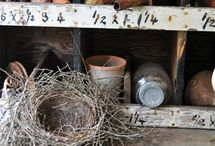 Bird Houses and Nests / by Amy Eshelman