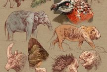 Animals - Pictures