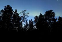 Polarlichter 2014 / Polarlights 2014
