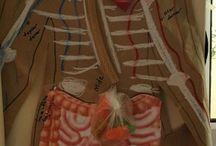 vücudumuz# Körper